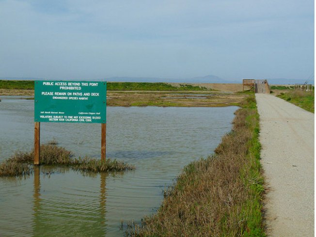 Raw Sewage Spill Puts Peninsula Lagoon Off Limits Indefinitely