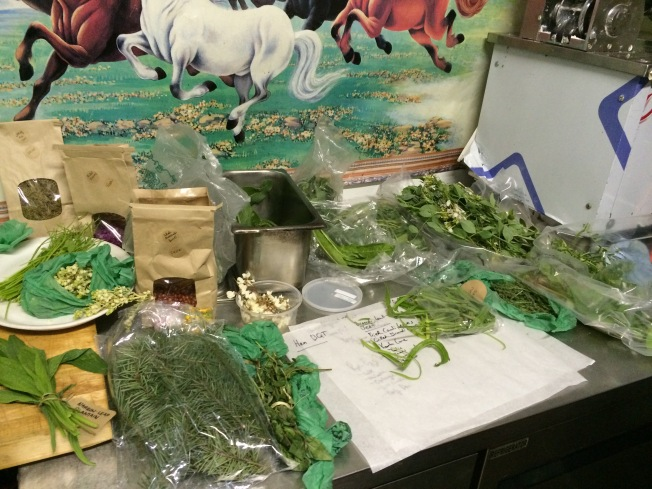 Wild Food Week Highlights Edible Weeds Going to Waste