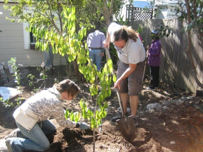 Greywater Basics: Reusing Household Water Workshop: Feb 9