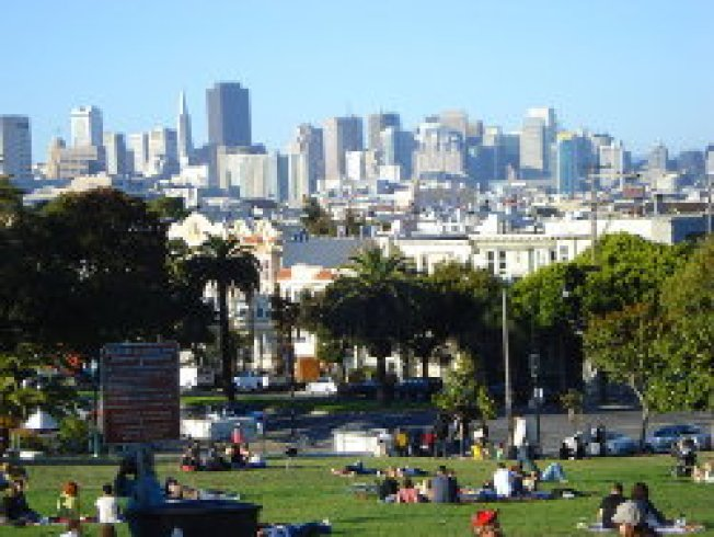 Dolores Park Playground Fix: Still. Stalled.