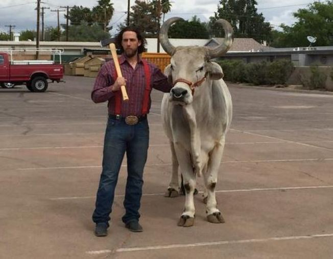 Madison Bumgarner Poses as Paul Bunyan With Bull for Giants Magazine