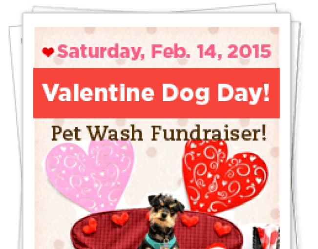Furry Friends Rescue's Valentine Dog Day