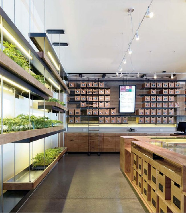 Marijuana Dispensary Wins Int'l Design Award