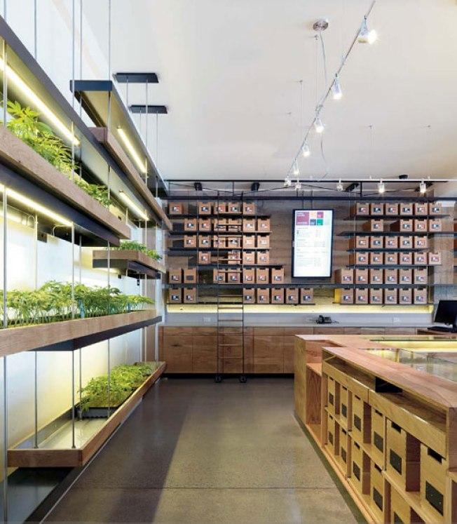 Marijuana dispensary wins int 39 l design award nbc bay area - Cannabis interior ...