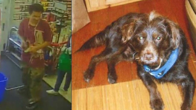 San Francisco Police Looking for Suspect in Dog Theft at Walgreens