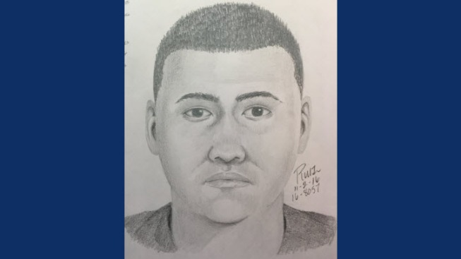 Sketch Released of Man Who Exposed Himself to Girl in Sunnyvale