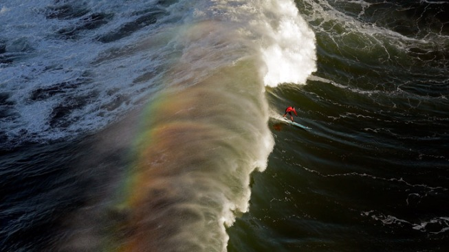 """Chasing Mavericks"" Worker Slips on Toilet, Sues"