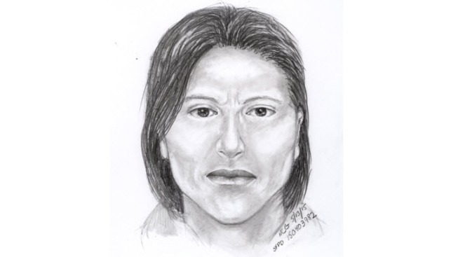 Police Release Sketch of Suspect Who Attacked Woman Near San Francisco's Union Square