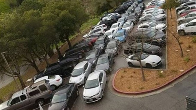 Instagram Account Parodies Parking Lot Woes Plaguing Tesla's Bay Area Offices