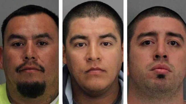 Three San Francisco 49ers Fans Charged with Parking Lot Beating of Minnesota Vikings Supporter