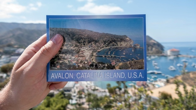 Catalina Express: Two-for-One Birthday Deal