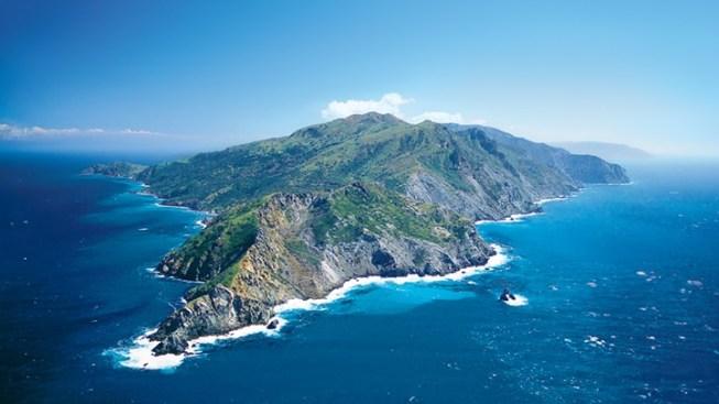 Run Across Catalina: The Avalon 50