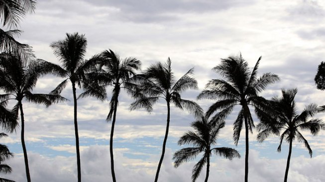 Some Calif. Retirement Trustees Cancel Hawaii Conference Plans