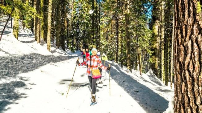 Crunch, Crunch: Yosemite Snowshoe Adventure