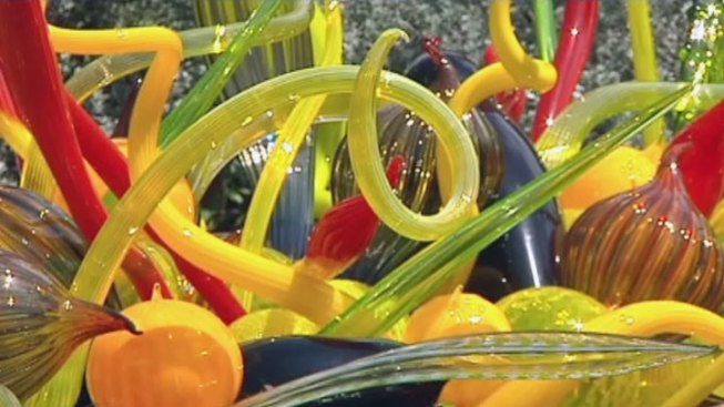 Catalina Island: Chihuly Exhibit to Open