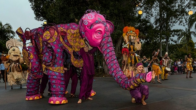 Revel in Wonder at San Diego's Nighttime Zoo