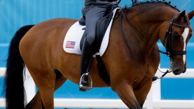"Ann Romney ""Thrilled to Death"" by Horse's Test"