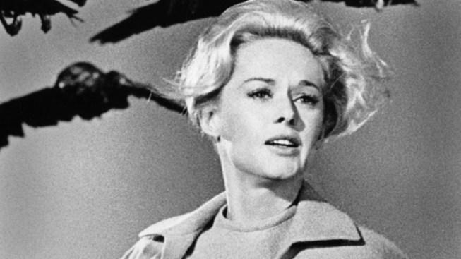 """""""The Girl"""" Reveals Hitchcock's Dark Designs On Tippi Hedren"""