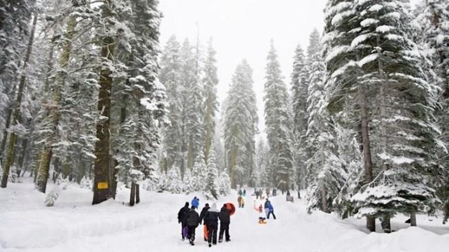 Winter Adventuring in the Sequoias