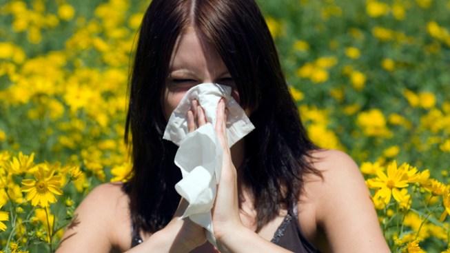 Rain Could Extend Allergy Season