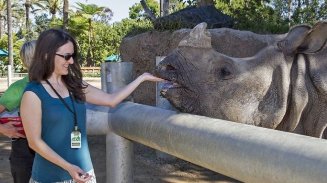 Backstage Peek: San Diego Zoo