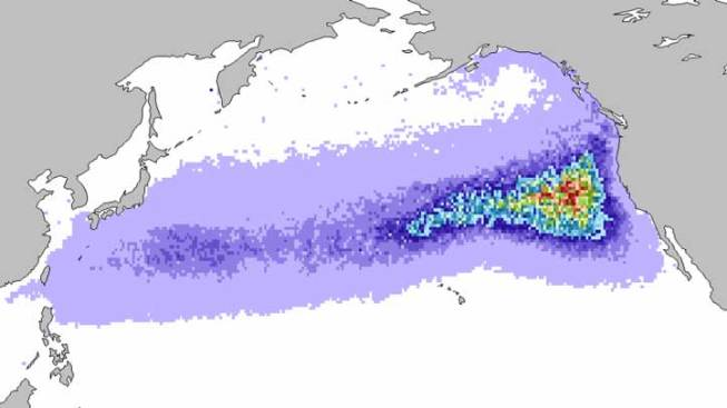 Animation Shows Path of Japan Debris Flow