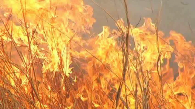 Wildfire Forces Evacuations in Trinity County