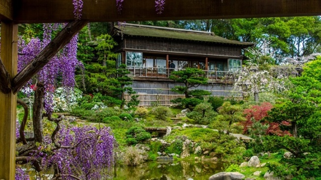 Tea at Hakone: Spring 2017 Opening
