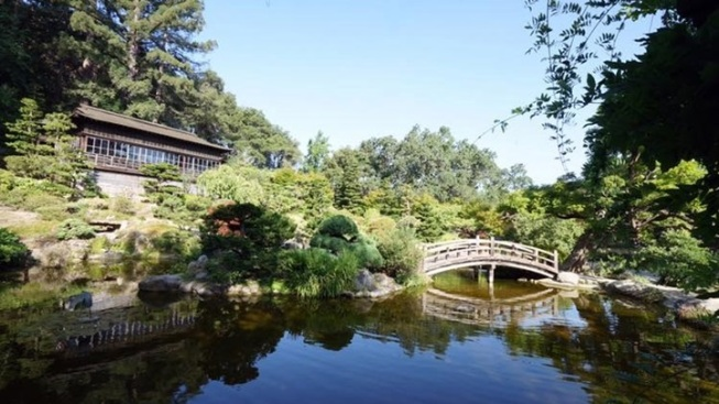 Hakone Gardens: Final 2016 Tea Ceremony