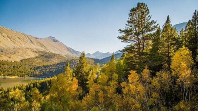 Eastern Sierra Fall: A Leaf-Peeper Deal