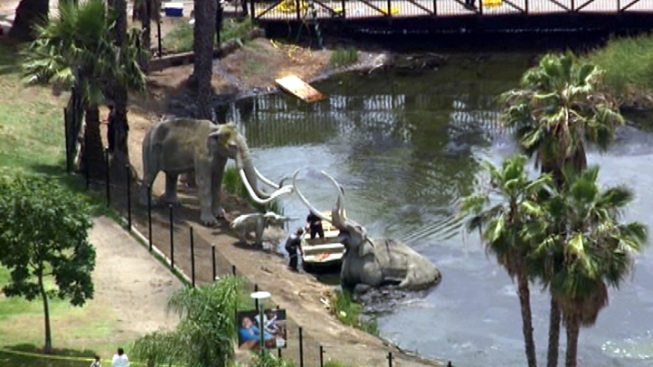 Homicide Investigation Leads to Weapons Search at La Brea Tar Pits
