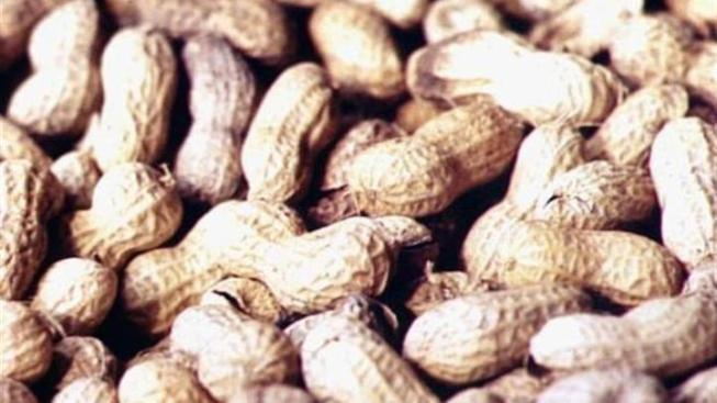 Sacramento Sued Over Girl's Peanut Allergy Death