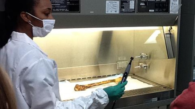 "Richmond Lab to Begin Identifying ""Speed Freak"" Bones"