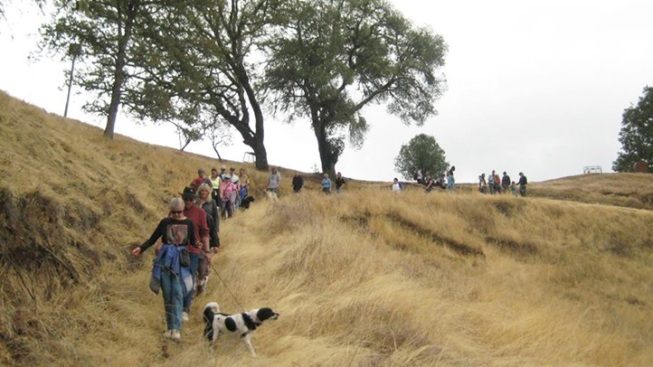 Wine, Views, Pups: Saracina Earth Day Dog Hike