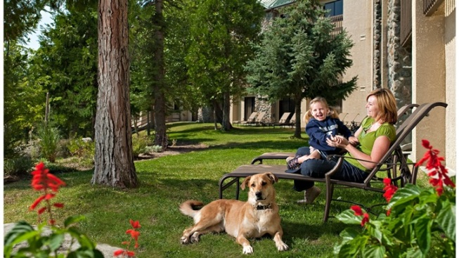 Pampered Pets: Tenaya Lodge Package