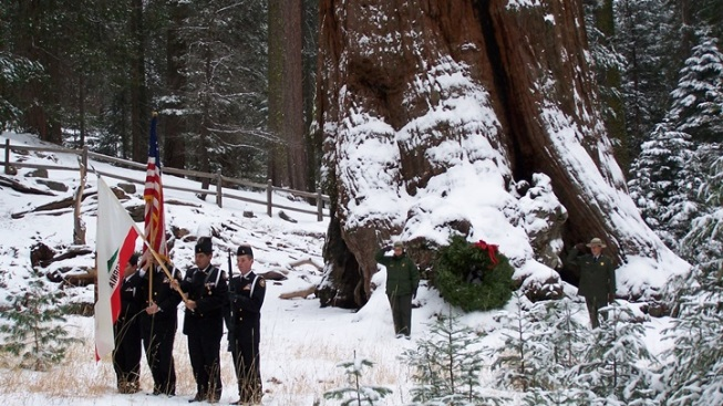 Nation's Christmas Tree: Sequoia Ceremony