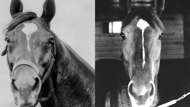 Horse of the Century: Man o' War vs. Secretariat