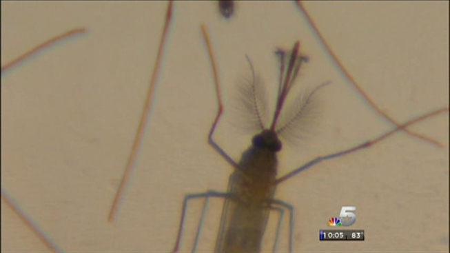 Two CoCo County Residents Have West Nile
