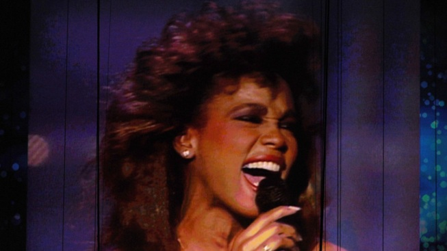 Whitney Houston Toxicology Tests Too Technical to Rush