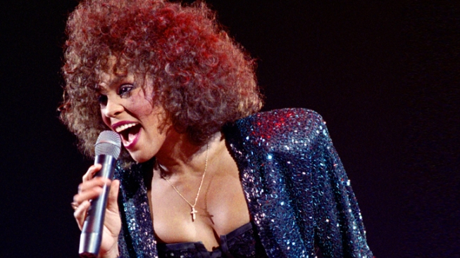 Judge Blocks Planned Sale of Whitney Houston's Emmy Award