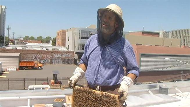 Local bee keeper is helping the environment and a local business that already has some of the tastiest treats around.