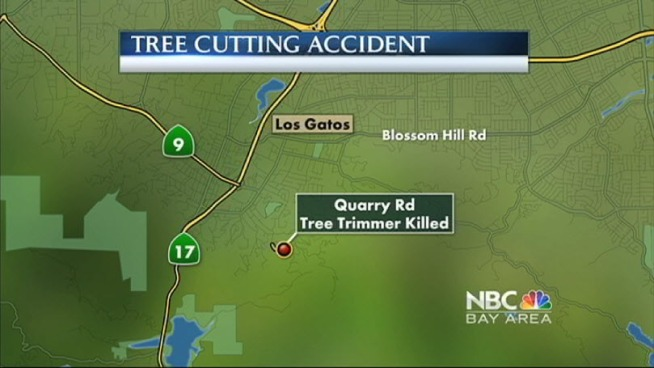 State investigators are looking into why a tree trimmer was killed Monday, and a second tree trimmer was injured after a tree fell on them in Los Gatos.