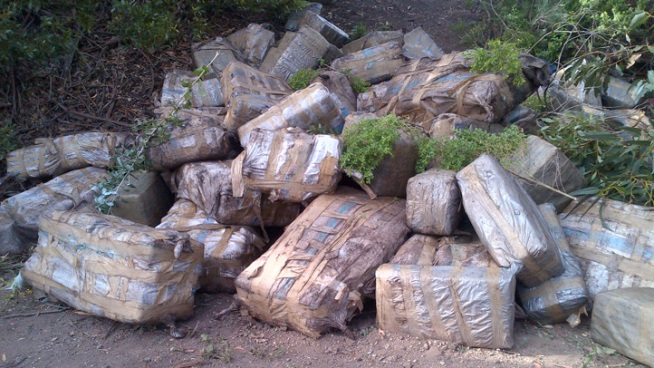 Drug Bales Recovered from Panga Near Carlsbad