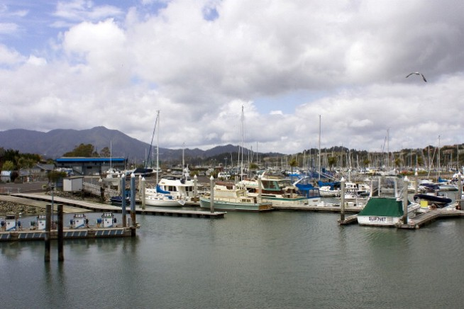 Sausalito Waters Littered with Aging Boats