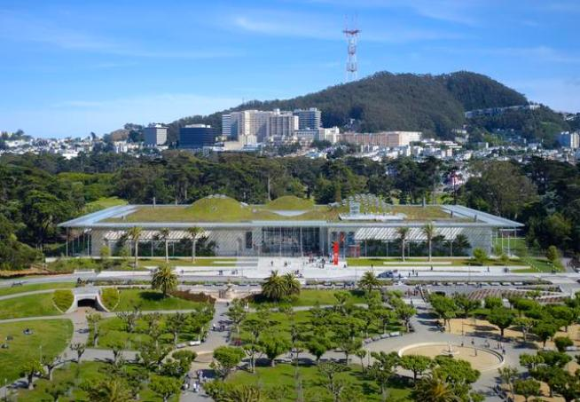 Academy of Sciences Celebrates Being Green