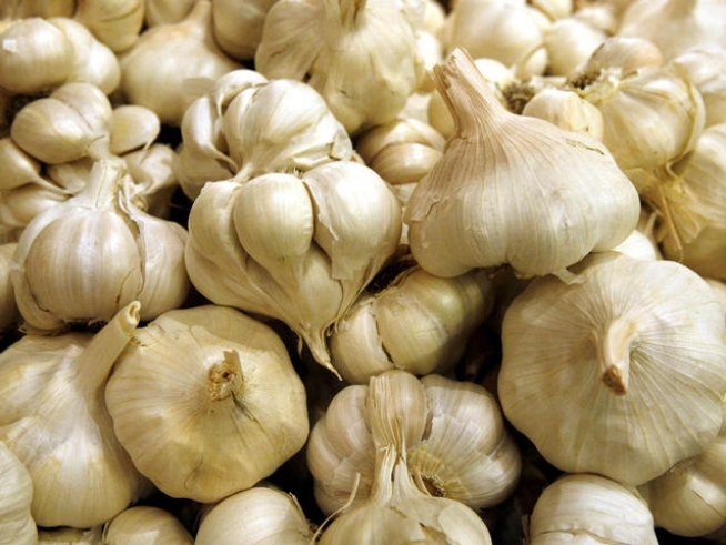 33 years and still pungent! The garlic capital of the world is throwing its annual party. Thousands of people are flocking to Gilroy and thousands of dollars are flocking to charity. NBC Bay Area's George Kiriyama explains.
