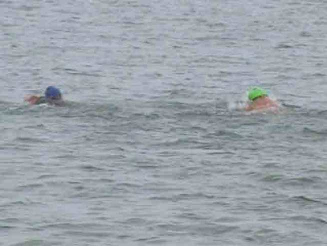 Jellyfish, Cold Foil Monterey Bay Swim Attempt