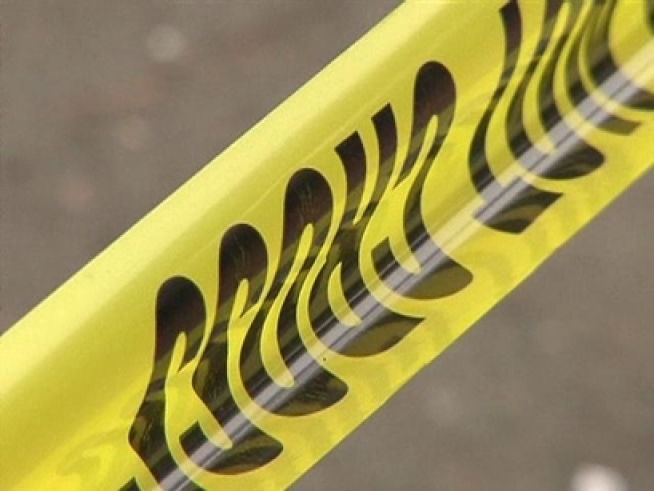 Woman, Dog Killed on Evening Walk