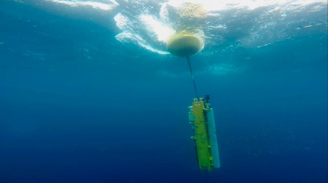 Scripps Institute of Oceanography Awarded $5M to Study Toxic Algae Blooms