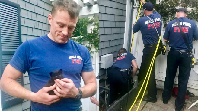 Menlo Park Firefighters Rescue Kitten Trapped in Drainage Pipe